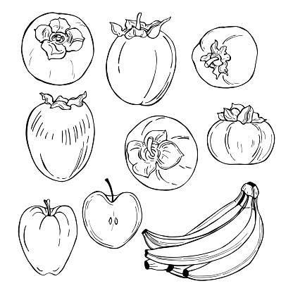 Hand drawn fruits on white background.Persimmon, apple, banana. Vector sketch  illustration.