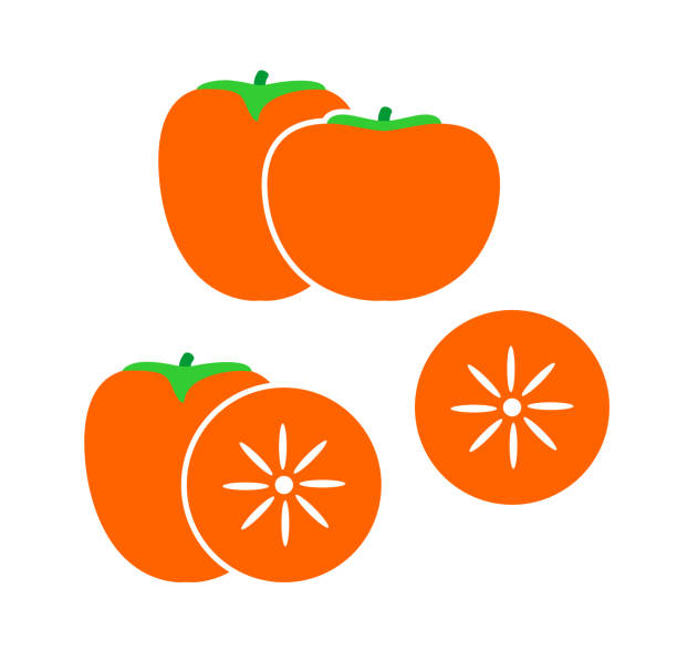 ilustrações de stock, clip art, desenhos animados e ícones de persimmon set. isolated persimm on white background - diospiro