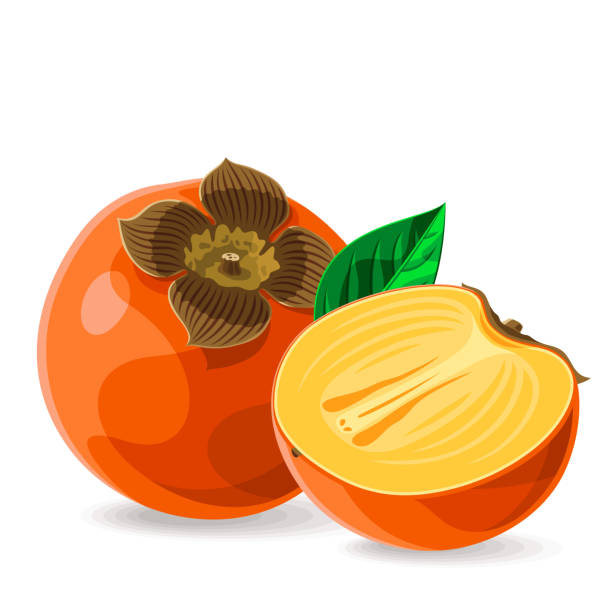 ilustrações de stock, clip art, desenhos animados e ícones de persimmon whole and a piece with leaves on white. vector illustration. no gradients - diospiro