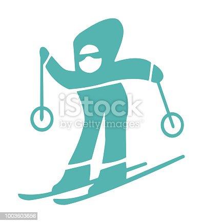 Person Downhill Skier
