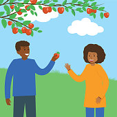 A Person Picking Fall Apples.