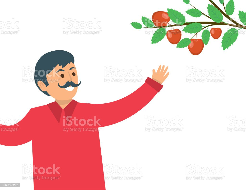 A Person Picking Fall Apples. vector art illustration