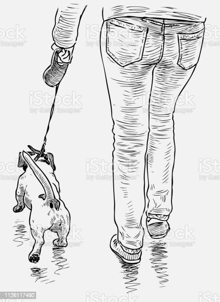 Person with his dog go on a stroll vector id1126117492?b=1&k=6&m=1126117492&s=612x612&h=yumyb93ew tem gj jfr4hnr9po8whzadcxvqh7j5ky=