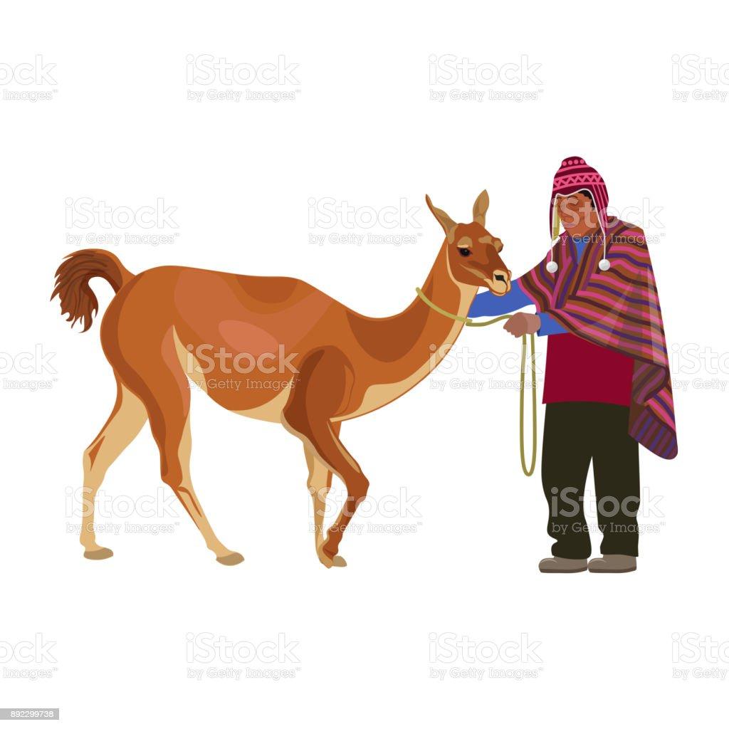 Peruano con guanaco - ilustración de arte vectorial