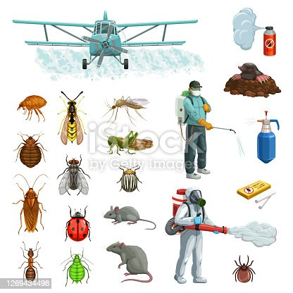 Pest control cartoon vector set with pest insects, bugs and rodent, exterminators, pesticide and plane. Insecticide sprayer, mosquito, cockroach and fly, mouse, rat, wasp and flea, ladybug and aphid