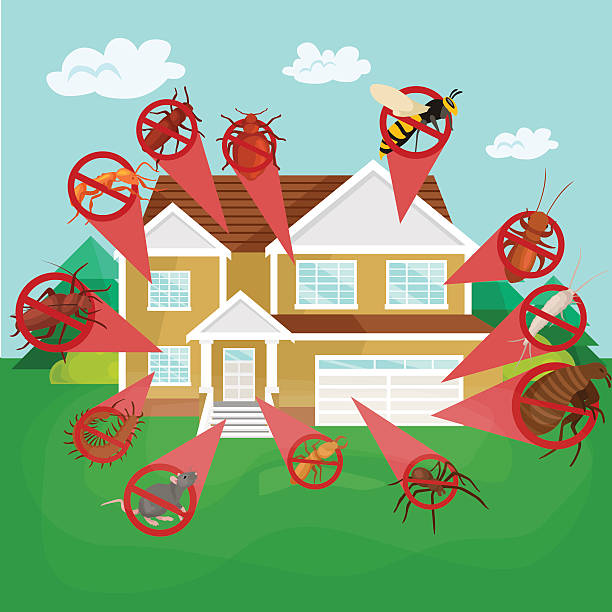 stockillustraties, clipart, cartoons en iconen met pest control concept with insects exterminator silhouette flat vector illustration - plaagdier