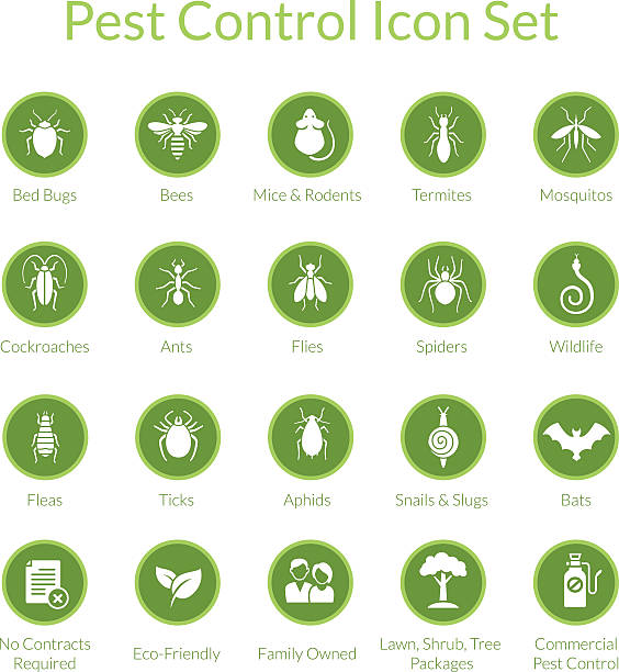 pest control icon set - bugs stock illustrations, clip art, cartoons, & icons