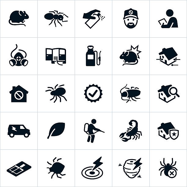 pest control icons - bugs stock illustrations, clip art, cartoons, & icons
