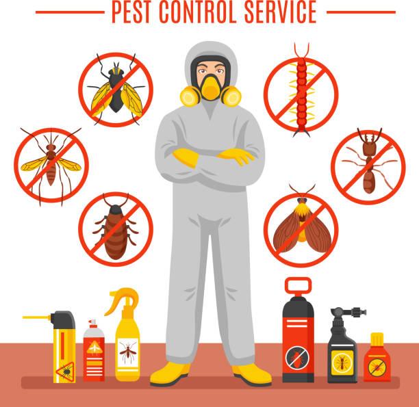 Schädlingsbekämpfung Insekten-Illustration – Vektorgrafik