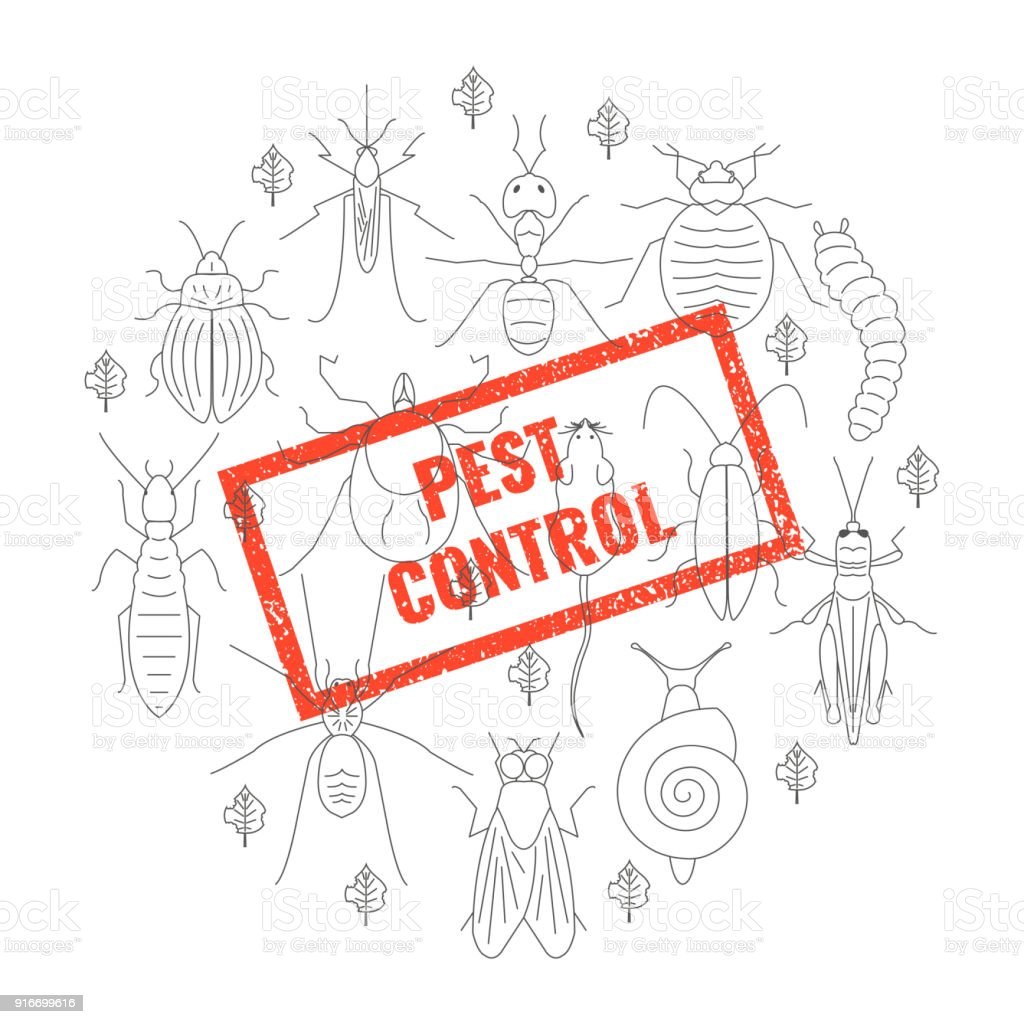 Pest control insect stamp vector art illustration