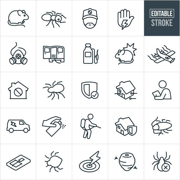 ilustrações de stock, clip art, desenhos animados e ícones de pest control line icons - editable stroke - inseto himenóptero