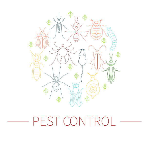 Royalty Free Pest Control Services Clip Art Vector Images