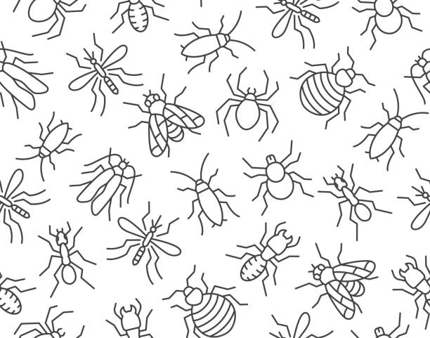 Pest control seamless pattern with flat line icons. Insects background - mosquito, spider, fly, cockroach, ant, termite vector illustrations for extermination service Pest control seamless pattern with flat line icons. Insects background - mosquito, spider, fly, cockroach, ant, termite vector illustrations for extermination service. insects stock illustrations