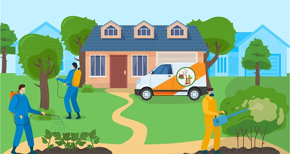 Pest control services banner with people detecting exterminating insects, professional disinfection against insects vector illustration.