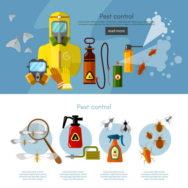 Pest control services insects exterminator vector art illustration