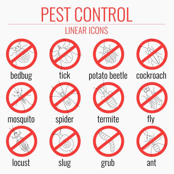 pest control-set-keine insekten beschilderung - mückenfalle stock-grafiken, -clipart, -cartoons und -symbole