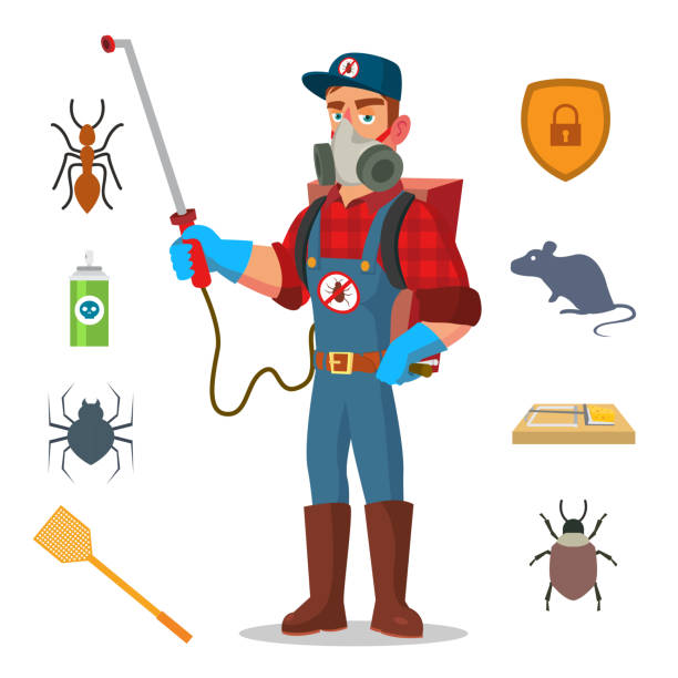 Best Pest Control Equipment Illustrations Royalty Free