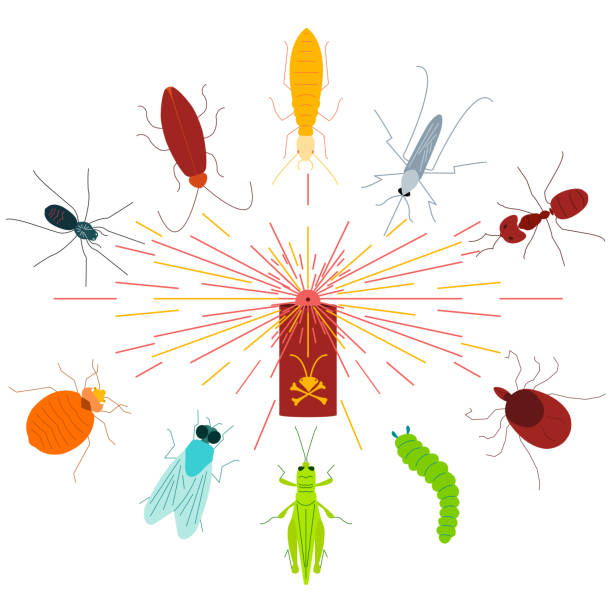 stockillustraties, clipart, cartoons en iconen met pest control-insecticide aerosol spray - bargerecht