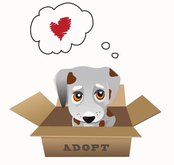 Codes For Adopt Me 2019 | StrucidCodes.com