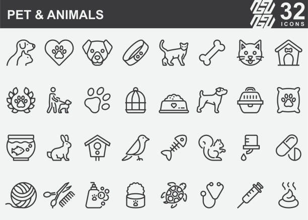 Pet and Animals Line Icons Pet and Animals Line Icons pets and animals stock illustrations