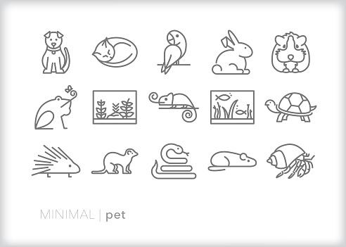 Pet animal icons