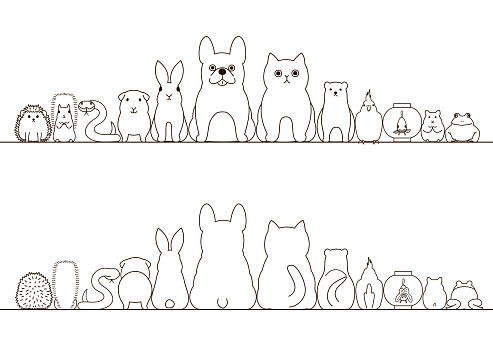 pet animals border set, front view and rear view, line art