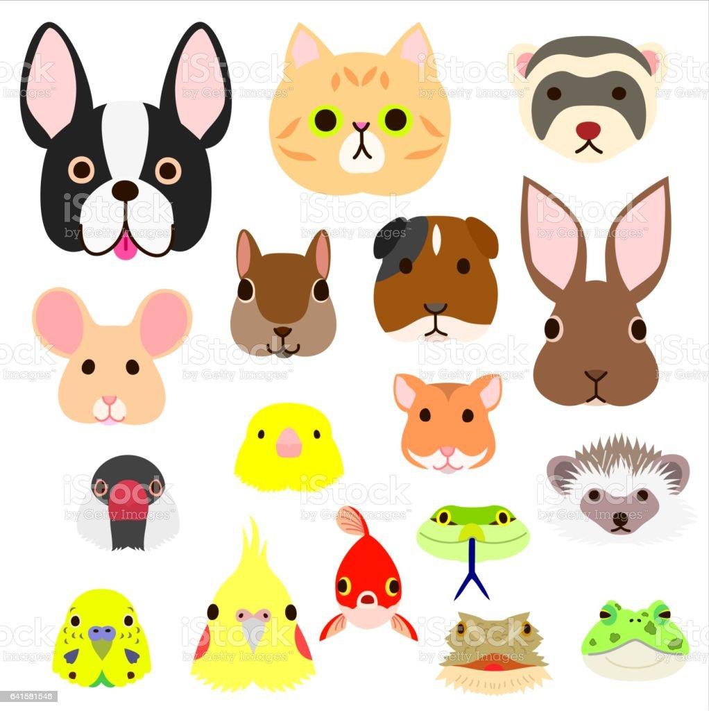 ペット動物顔セット のイラスト素材 641581546 | istock
