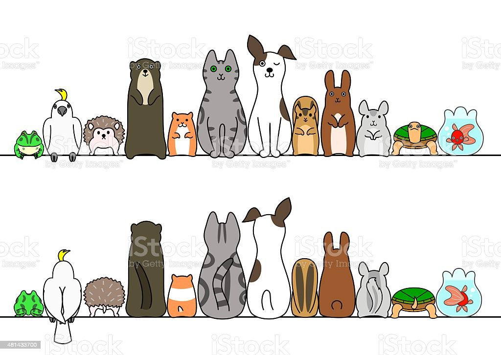 Pet animals in line, front and back vector art illustration