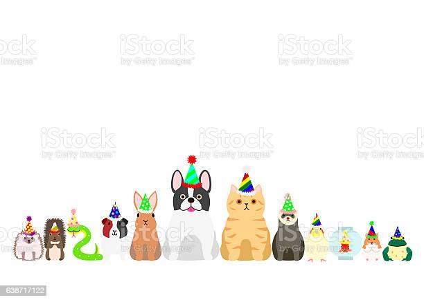 Pet animals with party hat border set vector id638717122?b=1&k=6&m=638717122&s=612x612&h=sxveuog1pgdqvyumr6uyhmwnu1rrgmoew5jofijwhho=