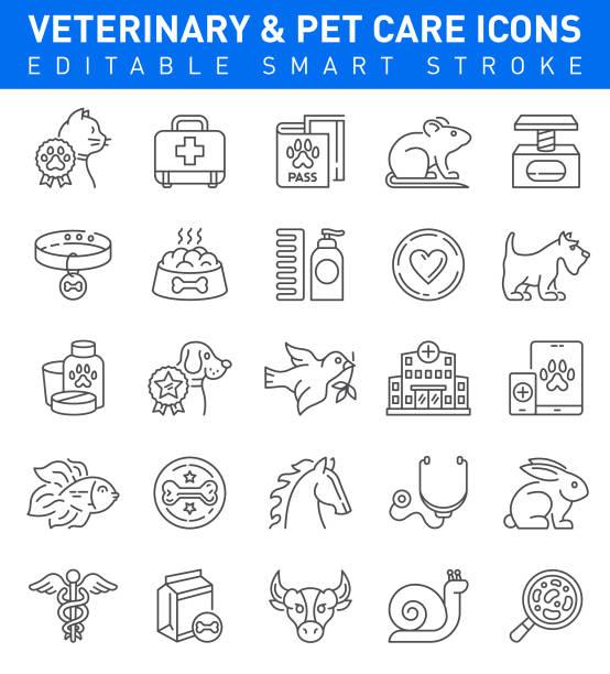 bildbanksillustrationer, clip art samt tecknat material och ikoner med pet care och veterinär ikoner. redigerbar stroke collection - djursjukhus
