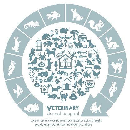 Pet Clinic Concept