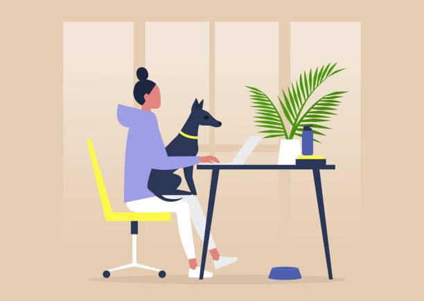 illustrations, cliparts, dessins animés et icônes de bureau amical d'animal familier, jeune caractère féminin travaillant avec un crabot sur leurs genoux - femme seule s'enlacer