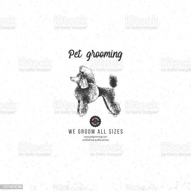 Pet grooming background with poodle vector id1074929766?b=1&k=6&m=1074929766&s=612x612&h=o1bbjrw8qfhvpx7tvewgp4esjohr qtksfshl4ral9c=
