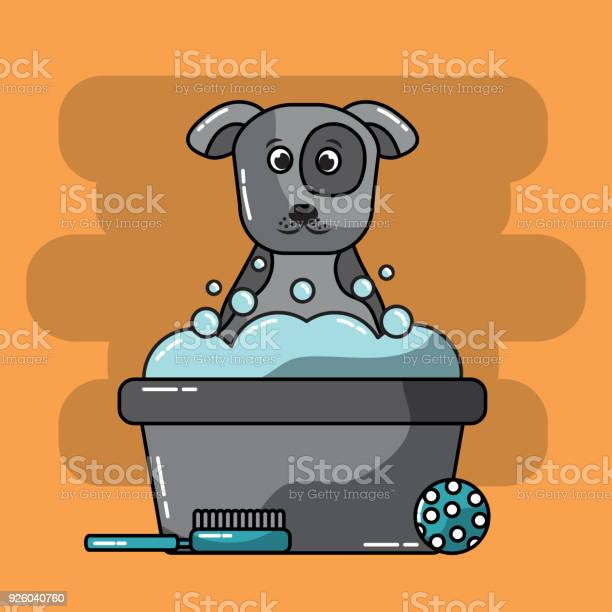 Pet grooming dog bucket foam brush ball toy vector id926040760?b=1&k=6&m=926040760&s=612x612&h=nsoj l0zslmfdcbb8cer3jo1ex jt4c7hpxknphvvrc=