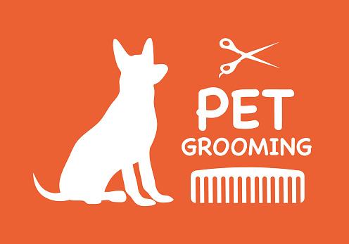Pet grooming service concept vector illustration. Dog, scissors, comb in flat design. Dog care.