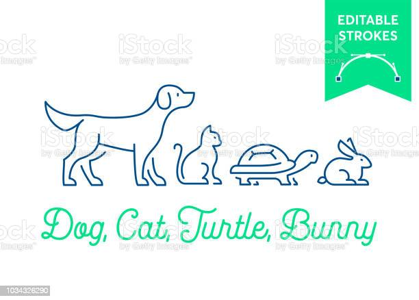 Pet icon set with editable strokes dog cat turtle and rabbit bunny vector id1034326290?b=1&k=6&m=1034326290&s=612x612&h=i7godrkfkvqa78q7ywh90qye0xqmxni37ki s393fvi=
