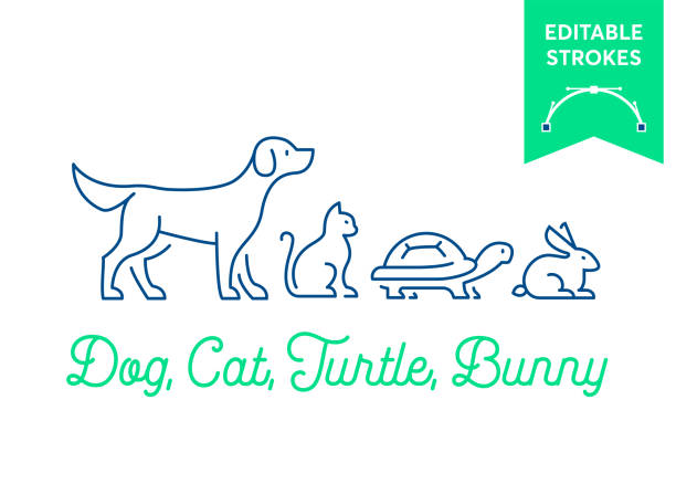 Pet icon set with editable strokes. Dog, cat, turtle and rabbit, bunny symbols. Minimal dog, pussy, tortoise and bunny outlines for infographics or web use. Pixel perfect flat design. Animal illustration Pet icon set with editable strokes. Dog, cat, turtle and rabbit, bunny symbols. Minimal dog, pussy, tortoise and bunny outlines for infographics or web use. Pixel perfect flat design. Animal illustration dog stock illustrations