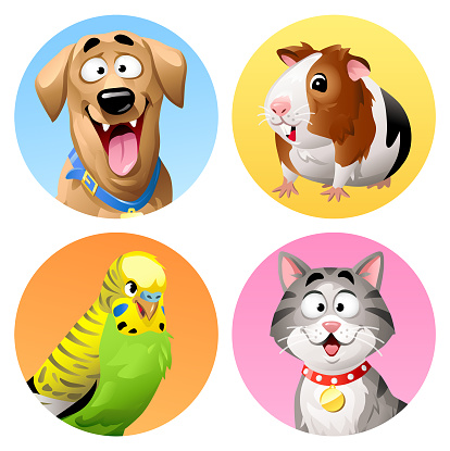 Pet Icons- Cat, Dog, Budgie And Guinea Pig