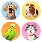 Colorful vector icon set of four animals: a cat, a dog, a budgie and guinea pig.