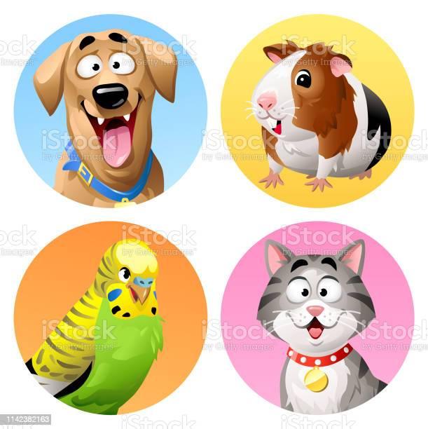 Pet icons cat dog budgie and guinea pig vector id1142382163?b=1&k=6&m=1142382163&s=612x612&h=yneljbzm cokz2hls3gzmzf kjhwe9ag0upnjbizj58=