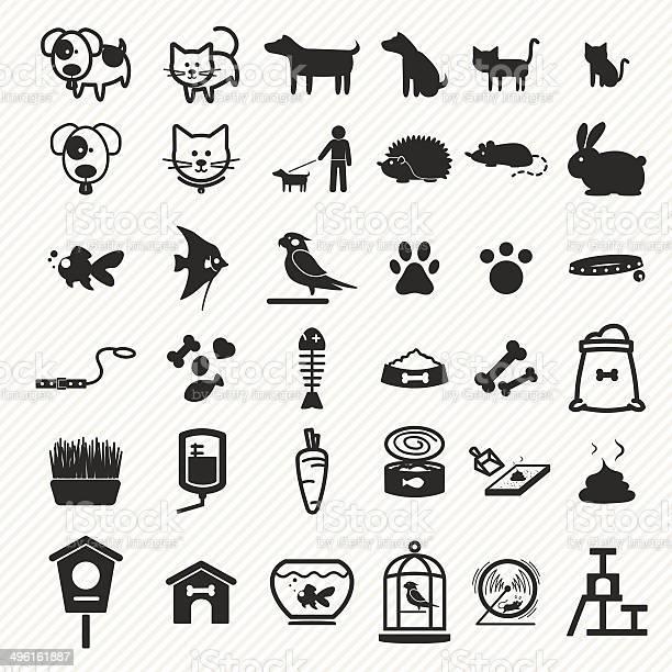 Pet icons set vector id496161887?b=1&k=6&m=496161887&s=612x612&h=tv0xqeo7h2znnnj2pshr4ji0zzkgpfnkkhqrbfe7dry=