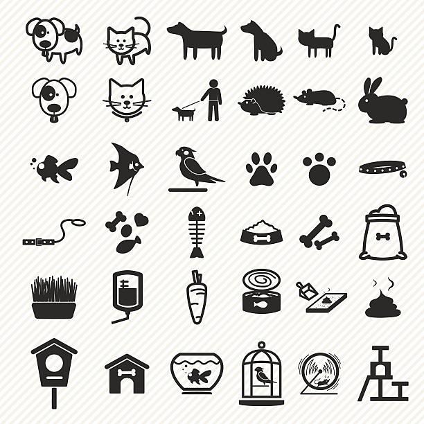ilustrações de stock, clip art, desenhos animados e ícones de conjunto de ícones de animais de estimação. - dog food