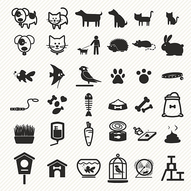 pet icons set. - animal bone stock illustrations