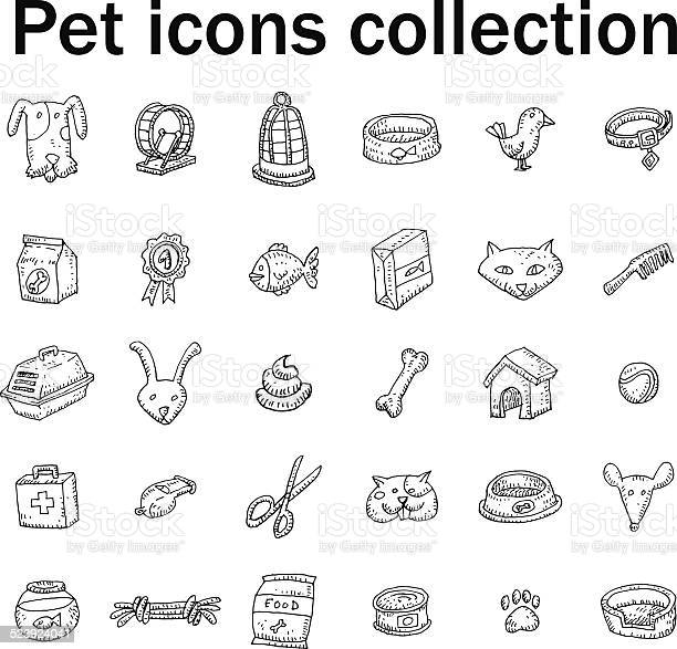 Pet icons set vector illustration vector id523924041?b=1&k=6&m=523924041&s=612x612&h=xviya2rswging2p4jxxbjxlwjamsk3xavxvmbcxda9i=