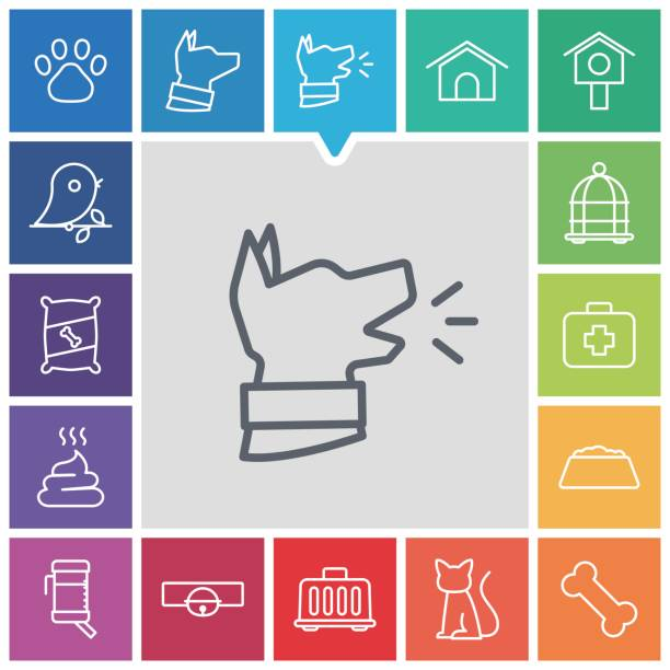 haustier symbole  - hundeleckerli stock-grafiken, -clipart, -cartoons und -symbole