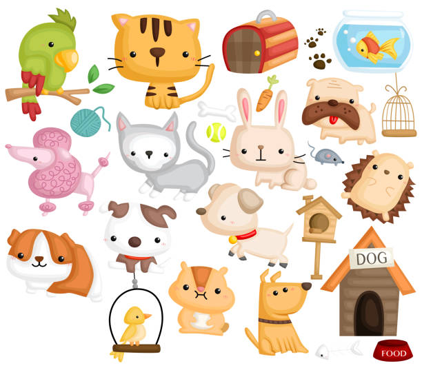 haustier bilder - hamsterhaus stock-grafiken, -clipart, -cartoons und -symbole
