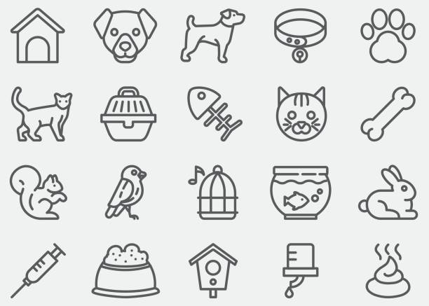 pet line icons - cat stock illustrations, clip art, cartoons, & icons