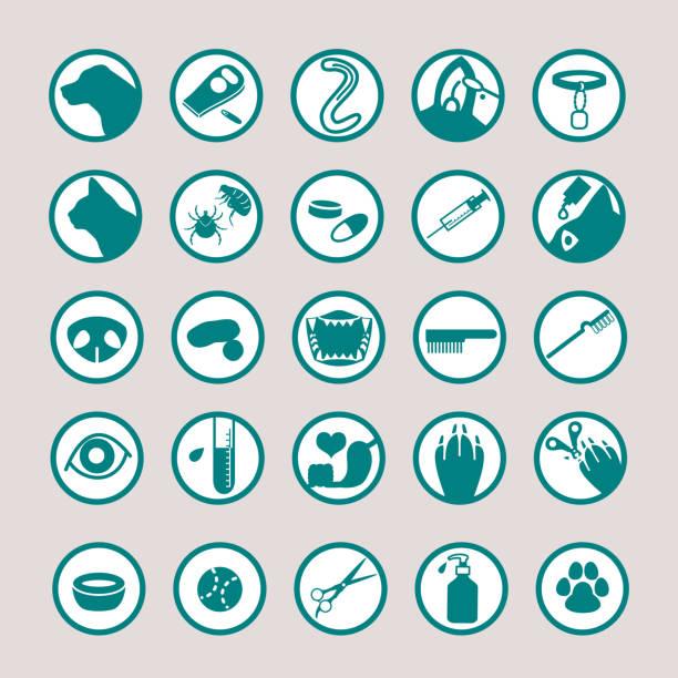 Pet medical icon set Pet medical icon set. parasitic stock illustrations