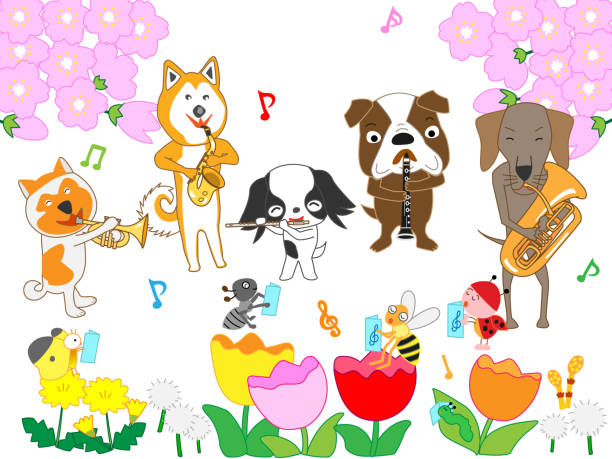 pet music in spring - saks stock illustrations