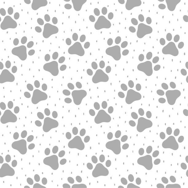 stockillustraties, clipart, cartoons en iconen met huisdier paw naadloze patroon achtergrond - zoogdieren met klauwen
